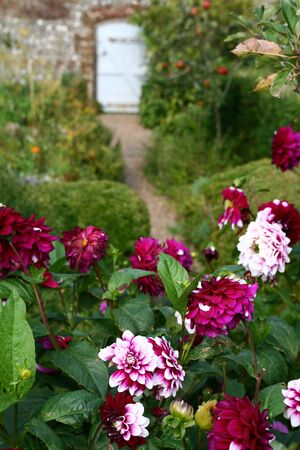 flowers in garden and walk path to small door. wall garden in bloom in the summer Stock Photo
