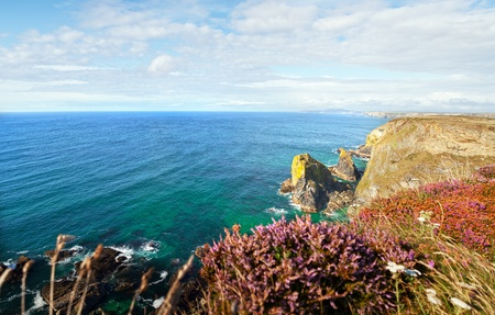 cornish: Landscape from Cornwall. Ocean or sea with cliffs and heather. Scenic and tranquil view of the coastline by Hells Mouth