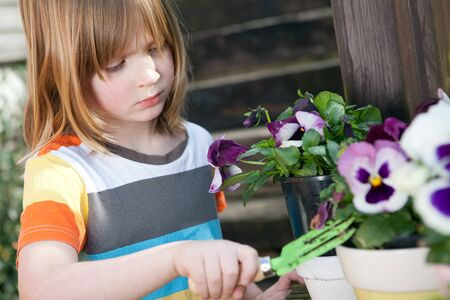 flowers boy: Gardening child with flowers. Boy in garden nurturing plant. sunshine on pansy and blond kid with fork