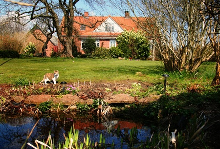 lake dwelling: danish farm house with park like garden. countryside architecture in landscaped nature
