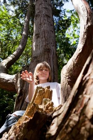 niño trepando: Niño trepar a los árboles. hombre joven en el bosque jugando en la rama. chico activo en la naturaleza