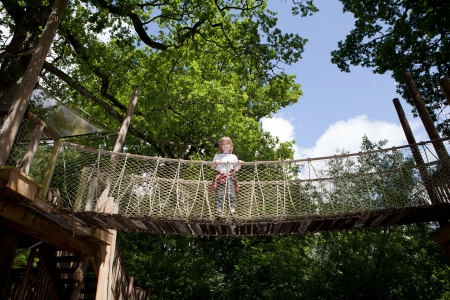 child in forest on bridge path. kid in woods playing amongst trees photo