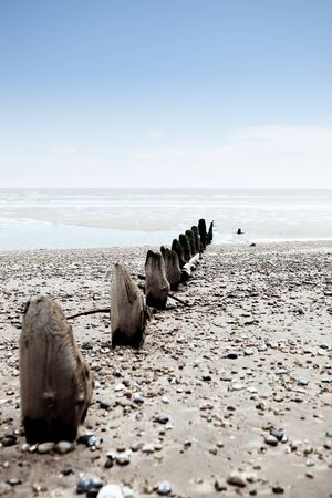 wood pillars: Beach or coast at Winchelsea in england sussex with view of groyne wood pillars