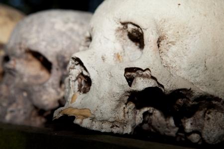sacrificio: esqueleto cr�neo en juego, el sacrificio humano en la selva. muerto espeluznante Foto de archivo