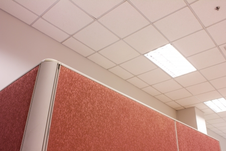 partitions: office pink Partition business