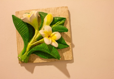flower on wall photo
