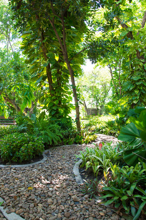 Landscaping in the garden. The path in the garden Imagens