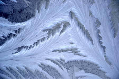 Frost crystals on window glass - frost pattern photo