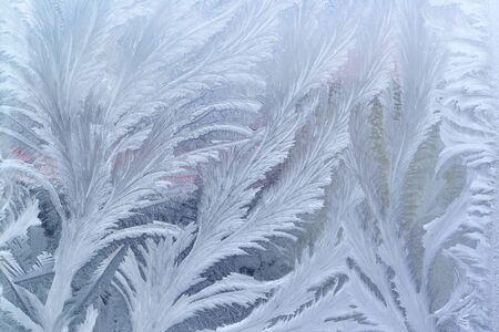 feathery:  Feathery frost pattern - ice flowes on window glass  Stock Photo