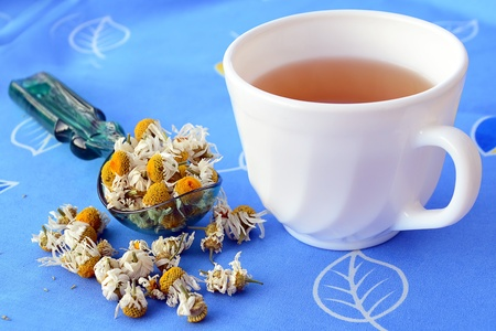 botanical remedy: Cup of chamomile tea and dried chamomile flowers on blue background