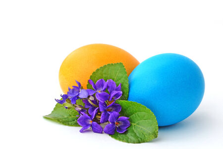 Colorful Easter eggs and violet flower on white. photo