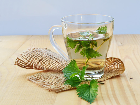 Stinging nettle and fresh nettle tea in glass mug. Stockfoto