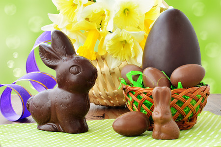 chocolate eggs: Easter background, chocolate eggs in basket, chocolate bunnies, daffodils on wooden background. Stock Photo