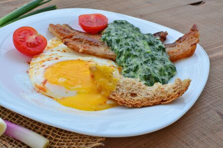 creamed: Fried egg with creamed spinach and bacon. Healthy breakfast. Stock Photo