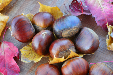 castanea sativa: Sweet chestnuts (Castanea sativa) and autumn leaves on wooden background.