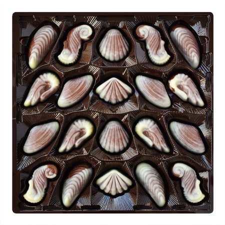 artisanal: Chocolate candies, seashell and seahorse truffles, artisanal confections in a box on a white background Stock Photo