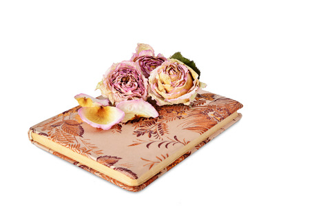 old diary: Dry roses and old diary isolated on white background.