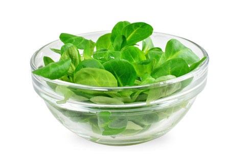 Corn salad leaf vegetable, lamb's lettuce isolated on white - Valerianella locusta