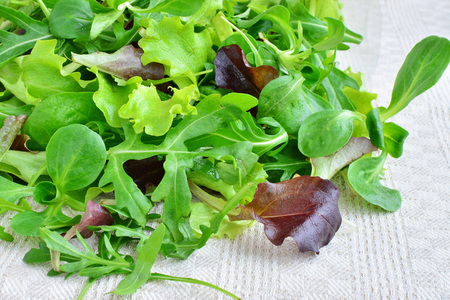 Fresh mixed greens leaf vegetables of arugula, mesclun, mache over kitchen towel Stock Photo
