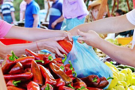 バイヤーとベンダーは、ファーマーズマーケットで新鮮な野菜とビニール袋を充填を手します。秋の作物をショッピングします。