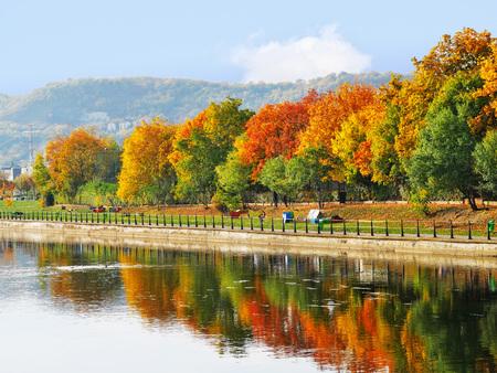 Baumgrenze in den Herbstfarben entlang dem Fluss reflektierte sich im Wasser Standard-Bild - 88418770