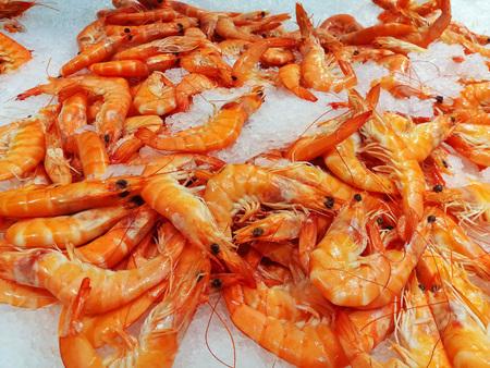 Fresh, raw shrimp on ice
