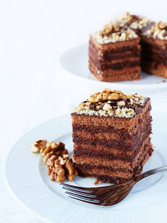 Layered chocolate cake squares with chocolate cream filling and walnut, vertical