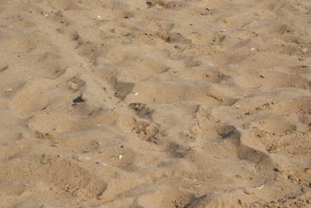 Close up of a sandy beach with set of traces