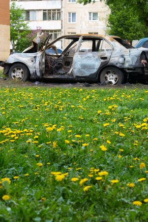 Kind on burnt down car being on a green meadow Stock Photo