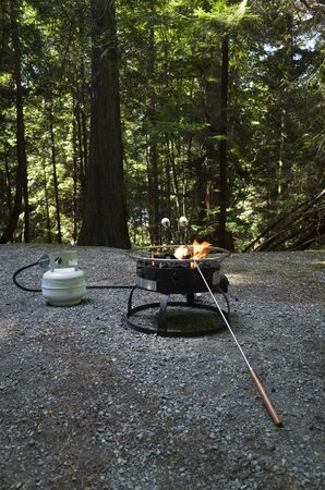 Propane portable campfire allowed for use during campfire bans