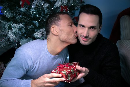 Gay male couple exchanging christmas gift in front of tree. One kissing, other smiling at camera Stock Photo