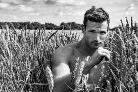 Shirtless good looking man sitting in cornfield on a summers day
