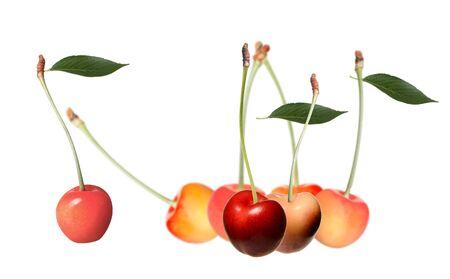 Seven cherries Stock Photo