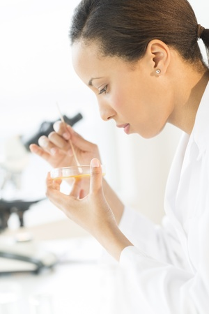 Side view of young female technician examining solution in petri dish at laboratory