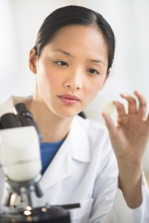 mid adult female: Mid adult female scientist analyzing sample with microscope in laboratory