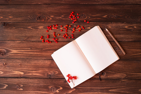 Blank open white notebook, wooden pencil and red ashberry on wooden background photo