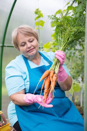 pensionary: Smiling pensioner with carrot at green house