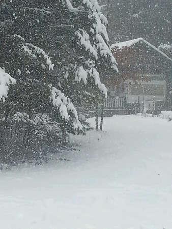 Snowy day Stok Fotoğraf