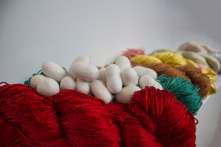 Colored silk threads and silk cocoons Foto de archivo