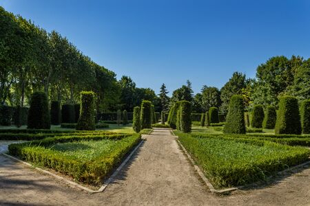 Traditional ornamental french garden and trees
