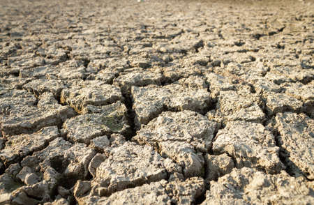 Cracked dry land dehydrated as a result of global warming and drought
