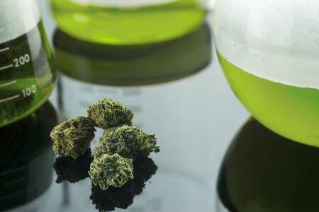 Medizinische Cannabisforschung Standard-Bild - 56407089