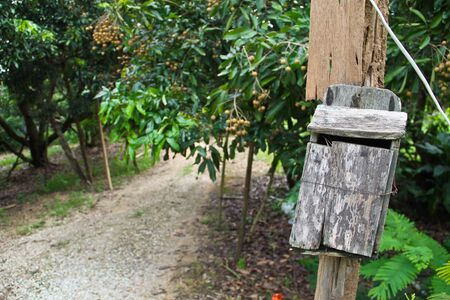 Traditional letterbox in North Thailand photo