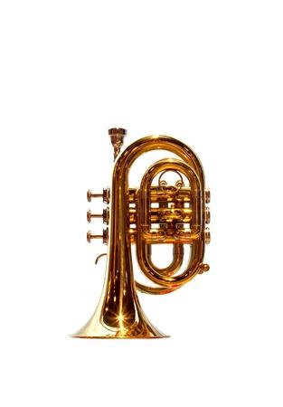 Pocket trumpet on white photo