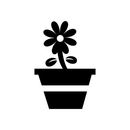 plant pot: Plant in flower pot isolated on white