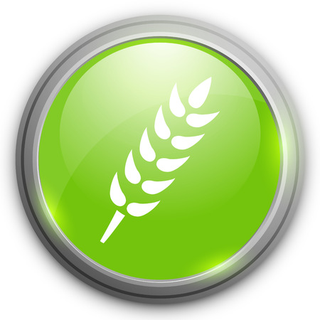 gluten: Gluten free icon. No gluten Illustration