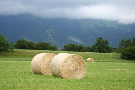 Round hay bales in the field against mountains. Italian agricultural landscape Stock Photo - 106270226