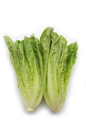 Fresh lettuce salad isolated on white background Zdjęcie Seryjne - 122352104