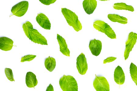 Fresh mint leaves on white background, leaves pattern, top view Reklamní fotografie