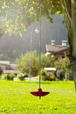 Round red swing for children on a tree. Stock fotó